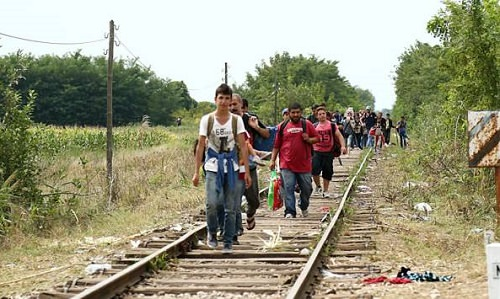 migrants_in_hungary_2015_aug_010