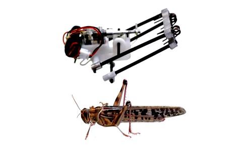 salvataggio-robot-israeliano